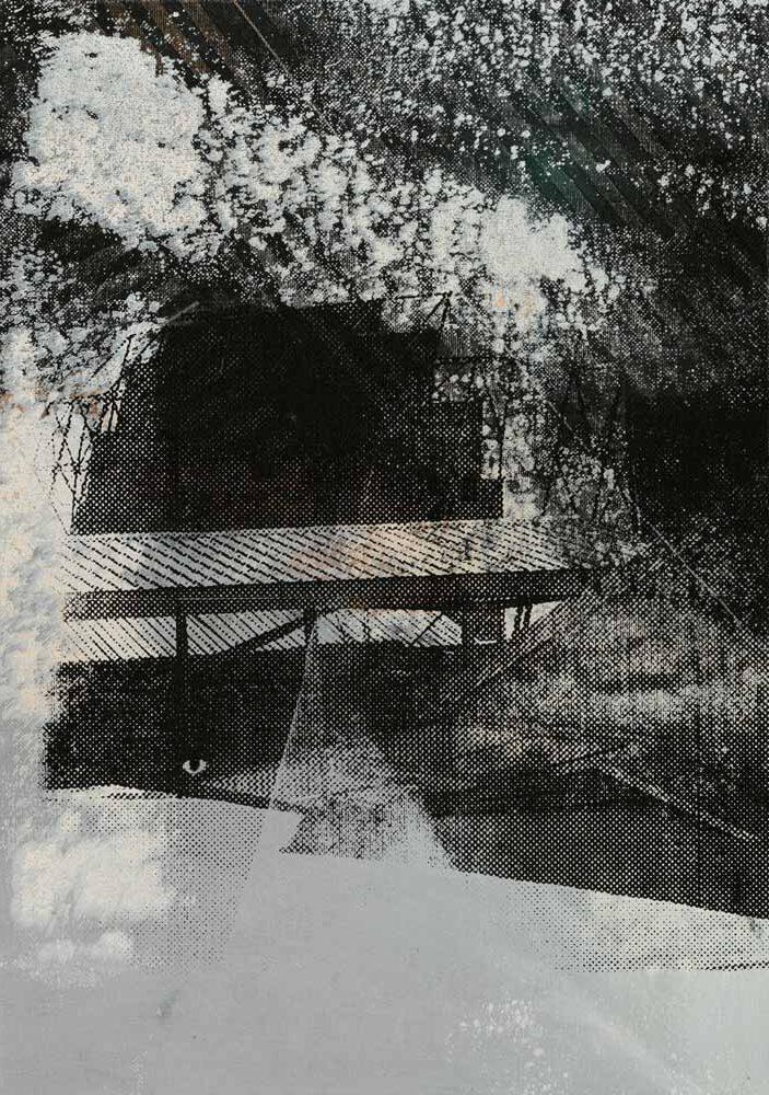 #20216 | Acryl und Siebdruck auf Leinwand | 43 x 30 cm